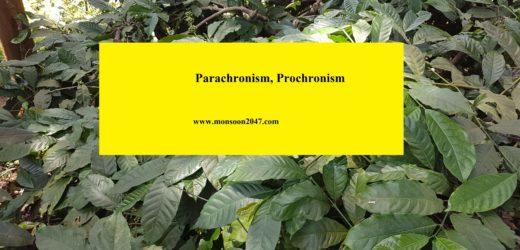 Parachronism, Prochronism