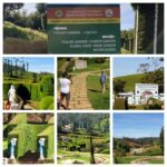 Ooty, the Nilgiris District: Karnataka Siri Horticulture Garden