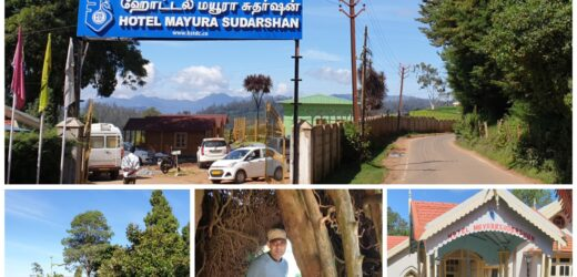 Ooty, the Nilgiris: Hotel Mayura Sudarshan
